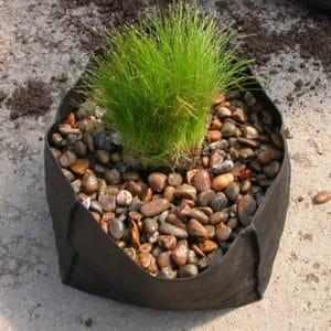 Planterings- korgar / påsar